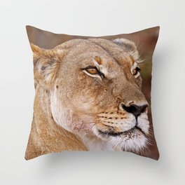 Lioness in Africa, wildlife Throw Pillow