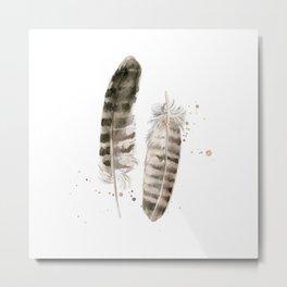Pheasant Feather 2 Metal Print