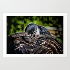 I Am Watching You Art Print