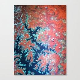 Deep craky earth view texture Canvas Print