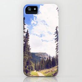Chicago Lakes iPhone Case