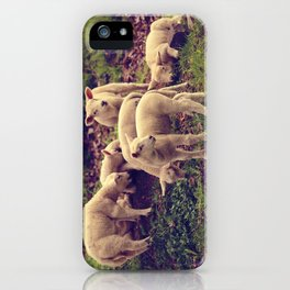 Lambs iPhone Case