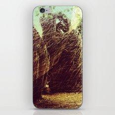 nests iPhone & iPod Skin