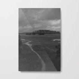 Foottrail, Skidaway Island State Park Metal Print