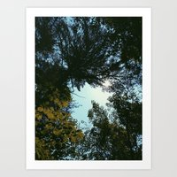 hiking Art Prints featuring Hiking  by William Reynolds