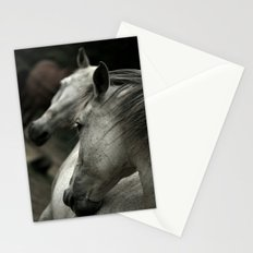 white horse Stationery Cards