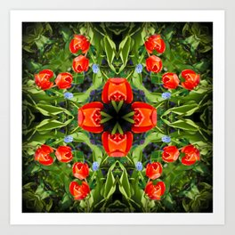 A square of red tulips Art Print