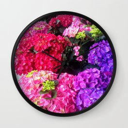 Colorful rainbow in my garden Wall Clock