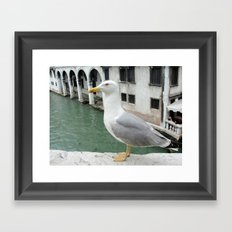 Bird in Venice Framed Art Print
