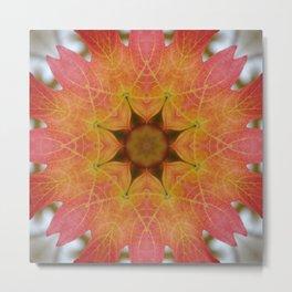 Sugar maple mandala 1 Metal Print