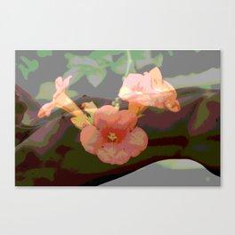 Trumpet Flower Girl  Canvas Print
