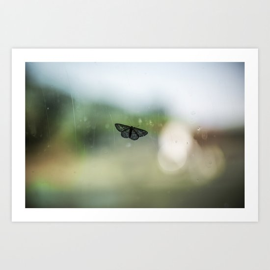 The Immobile Moth Art Print