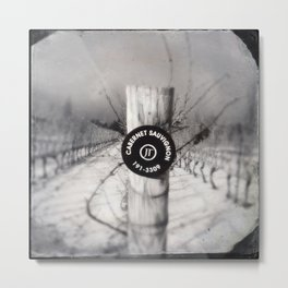Cabernet - black and white wine photo vineyard Metal Print