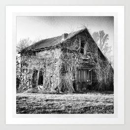 Battered & Overgrown Barn Art Print