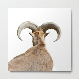 Goat Horns Metal Print
