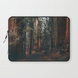 Walking Sequoia Laptop Sleeve