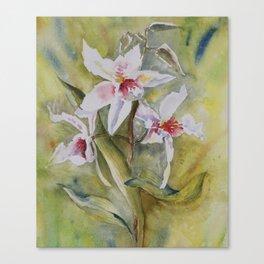 orchidée Canvas Print