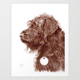 Chocolate Labradoodle Art Print