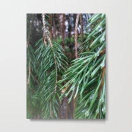 Forest Tree Metal Print