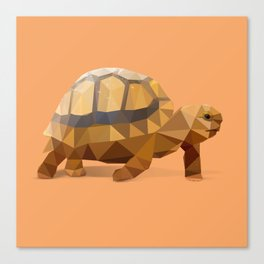 Low Poly Hermann's Tortoise Canvas Print