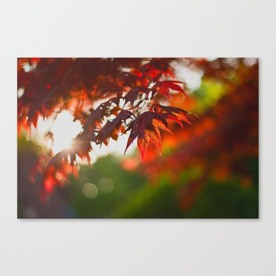 Indian Summer III Season Autum red Leaves Fall #Society6 Canvas Print
