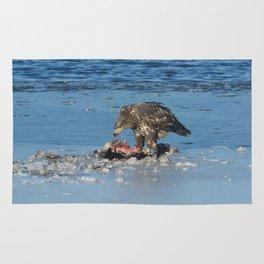 Juvenile Bald Eagle eating prey Rug