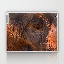 Gentle and Wise Laptop & iPad Skin