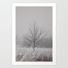 Wintered Art Print
