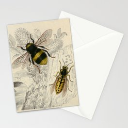 Naturalist Bee And Wasps Stationery Cards