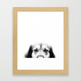 Dog portrait in black & white Framed Art Print