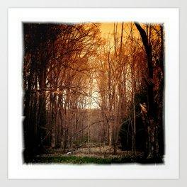 the dark forest Art Print