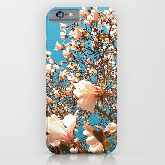 magnolia tree II iPhone & iPod Case