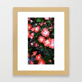 Pink Pleasures Framed Art Print