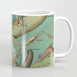 Strange Unique Ocean Animals Vintage Scientific Illustration French Language Encyclopedia Lithograph Coffee Mug