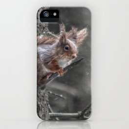 squirrel in the snow iPhone Case