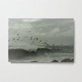 Birds dancing in the waves Metal Print