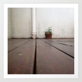 #Photo186 #207 #BeautifulMundane #BeautifulSolitude / #Mint Art Print