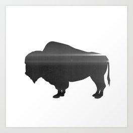 Buffalo print, Black & White Art Print