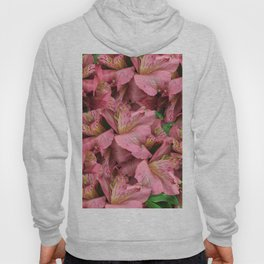 Cranberry Lilies Hoody