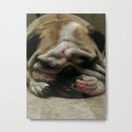 Bulldog Sleeping Metal Print