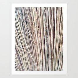 Beige Brushwood Photography Art Print
