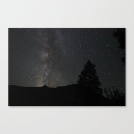 Tree with Milky Way Galaxy and Stars Canvas Print