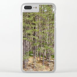 Tall Trees on the shore Clear iPhone Case