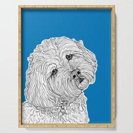 Cockapoo Dog Portrait ( blue background ) Serving Tray