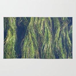 Wild Rice of San Marcos Texas Rug