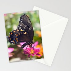 Spicebush Swallowtail Stationery Cards