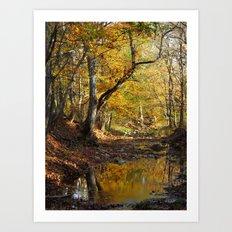 fall 2016 III Art Print