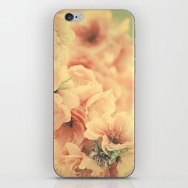 Bliss in the Spring iPhone Skin