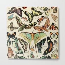 French Vintage Butterflies Chart Adolphe Millot Papillons Larousse Pour Tous Poster  Metal Print