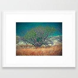 Reach for the Sea Framed Art Print